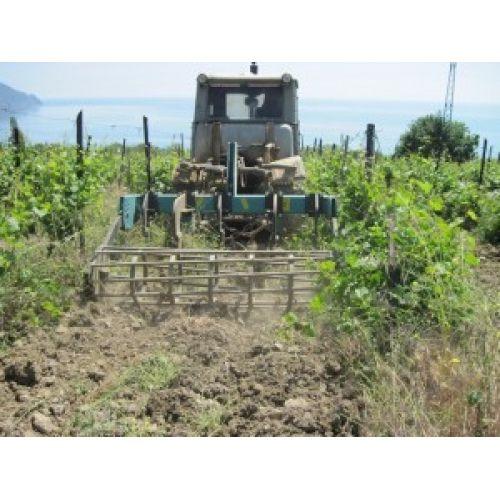 Чизель дископак ЧГ-2,2В  ширина 2,2 м на 5 стійок для виноградників | t-i-t.com.ua